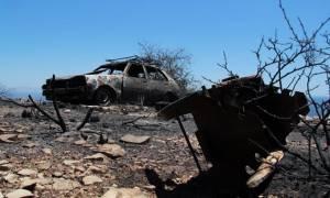 Πυρκαγιά στη Μάνη: Μηνύσεις κατά παντός υπευθύνου