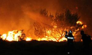Ηράκλειο: Μεγάλη πυρκαγιά στον Προφήτη Ηλία