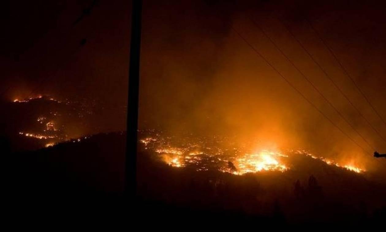 Φωτιά ΤΩΡΑ: Υπό μερικό έλεγχο οι πυρκαγιές σε Αρτέμιδα Αττικής και Κρυονέρι