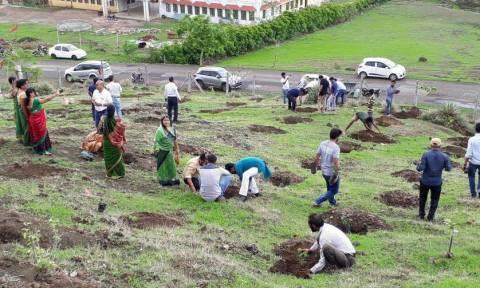 Απίστευτο ρεκόρ Γκίνες: Φύτεψαν 66 εκατομμύρια δέντρα μέσα σε 12 ώρες! (vid)