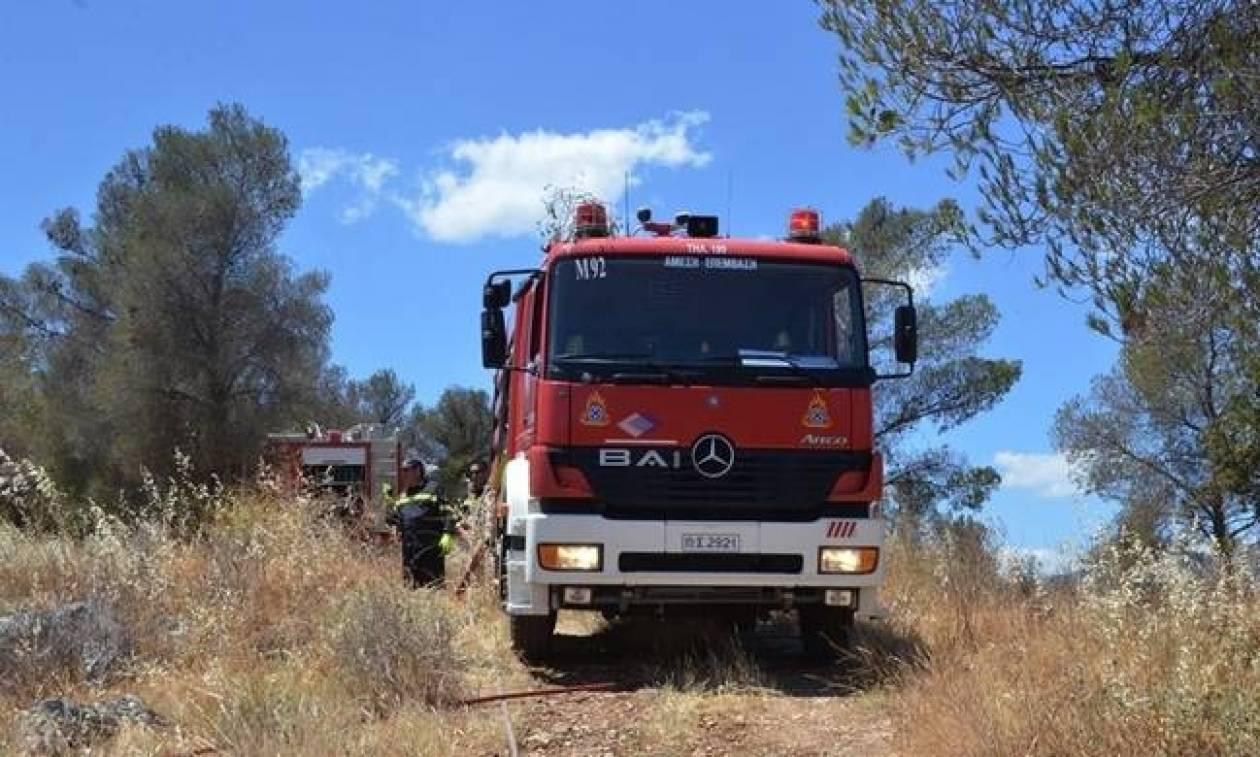 Φωτιά ΤΩΡΑ: Υπό έλεγχο η πυρκαγιά στο Θορικό Λαύριου