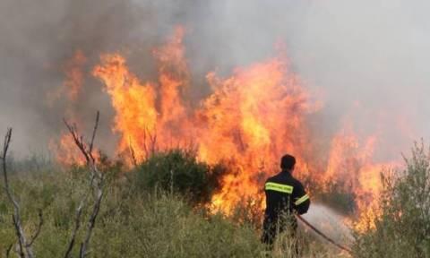 Φωτιά ΤΩΡΑ σε Κύθηρα και Μαγνησία