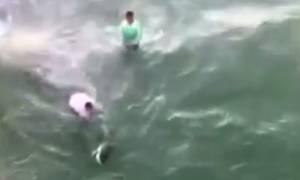 Viral video: Όταν κάνεις «μαγκιές» παίζοντας με ένα καρχαρία μπορεί να πάθεις αυτό!