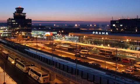 Αγριογούρουνο προκάλεσε πανικό σε αεροδρόμιο της Τσεχίας!