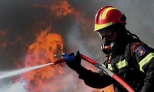 Φωτιά ΤΩΡΑ: Πυρκαγιά στο Λιβάδι Ρόπα της Κέρκυρας