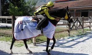 Οι «χρυσοί» νικητές του 71ου Ελληνικού Ντέρμπι ΟΠΑΠ μιλούν για την επιτυχία τους (pics+vid)
