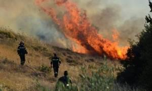 Φωτιά τώρα! Φλέγονται ξανά Ζάκυνθος και Μάνη