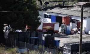 Μεγάλη πυρκαγιά σε εργοστάσιο στην Εθνική Οδό Αθηνών - Λαμίας