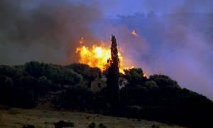 Φωτιά - Έβρος: Από κεραυνό προκλήθηκε η μεγάλη πυρκαγιά - Απειλείται το Εθνικό Πάρκο της Δαδιάς