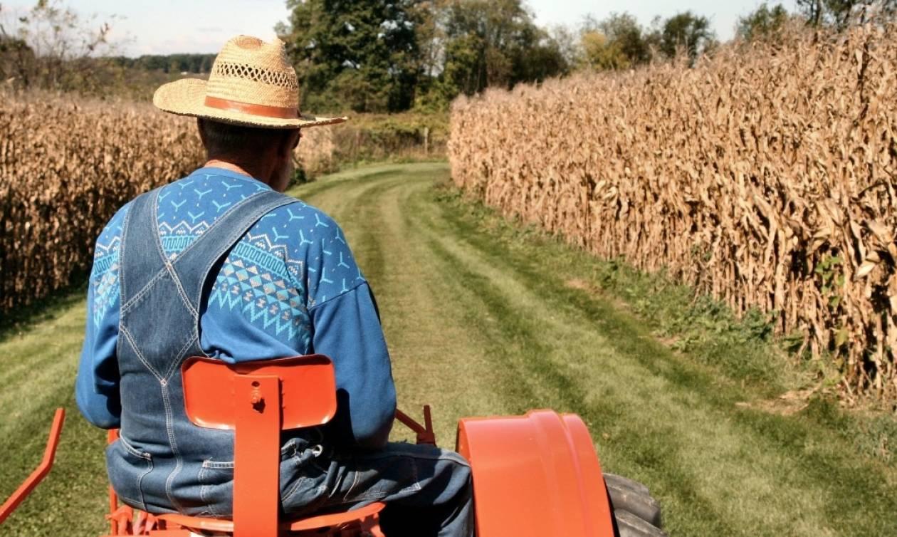 Φορολογικές δηλώσεις: Τι πρέπει να κάνουν οι αγρότες