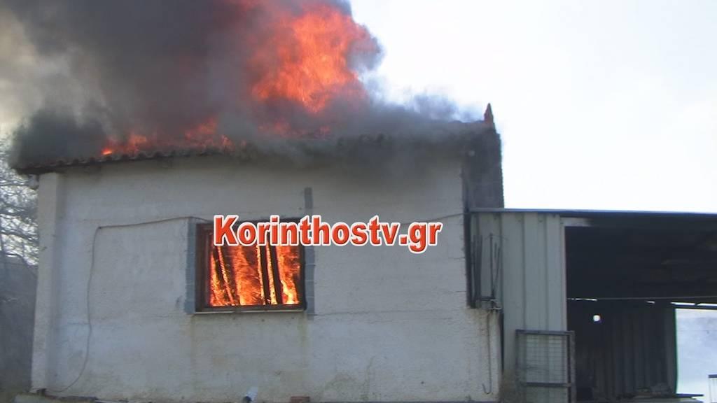 Κορινθία: Υπό μερικό έλεγχο η φωτιά στο Ζευγολατιό