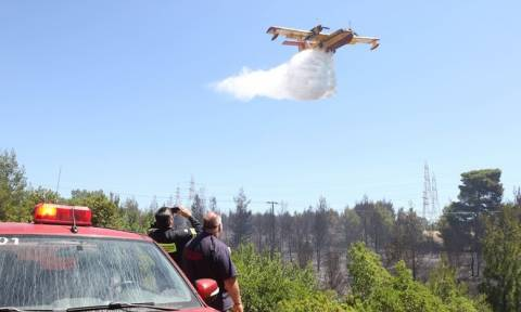 Πυρκαγιά μαίνεται στην Ξάνθη