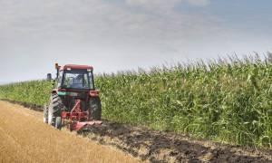 Διευκρινίσεις του ΕΦΚΑ για τις συντάξεις αγροτών
