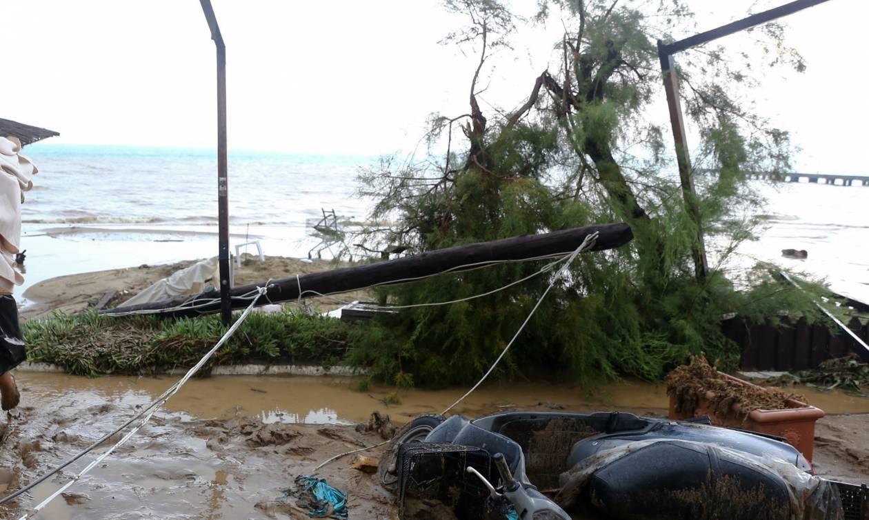 Κακοκαιρία - Λάρισα: Αιτήματα να τεθούν περιοχές του νομού σε κατάσταση έκτακτης ανάγκης