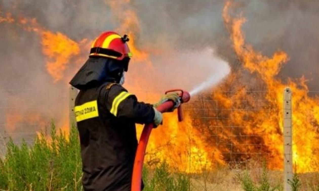 Θεσσαλονίκη: Λήξη «συναγερμού» για φωτιά κοντά στο Σέιχ Σου