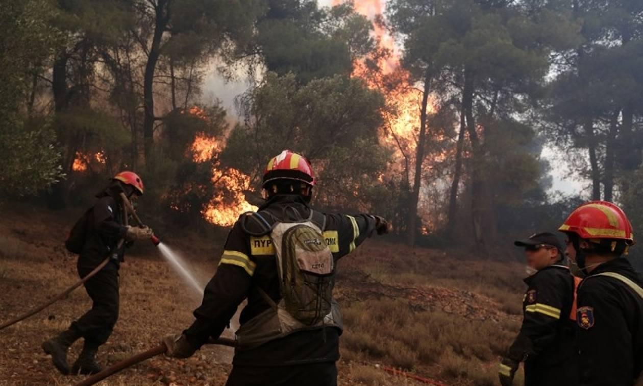 Υπό μερικό έλεγχο η φωτιά στην Κοξαρέ Ρεθύμνου