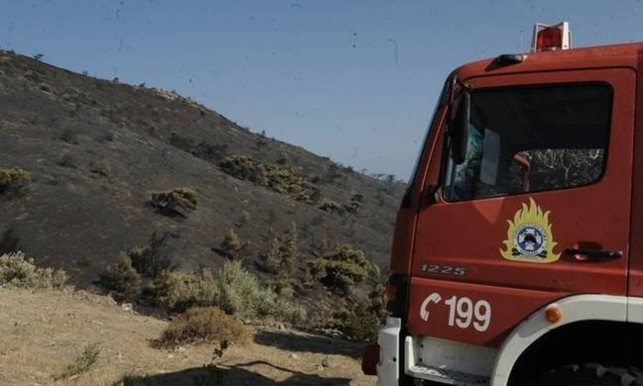 Ο χάρτης πρόβλεψης κινδύνου πυρκαγιάς για το Σάββατο 22/7 (pic)