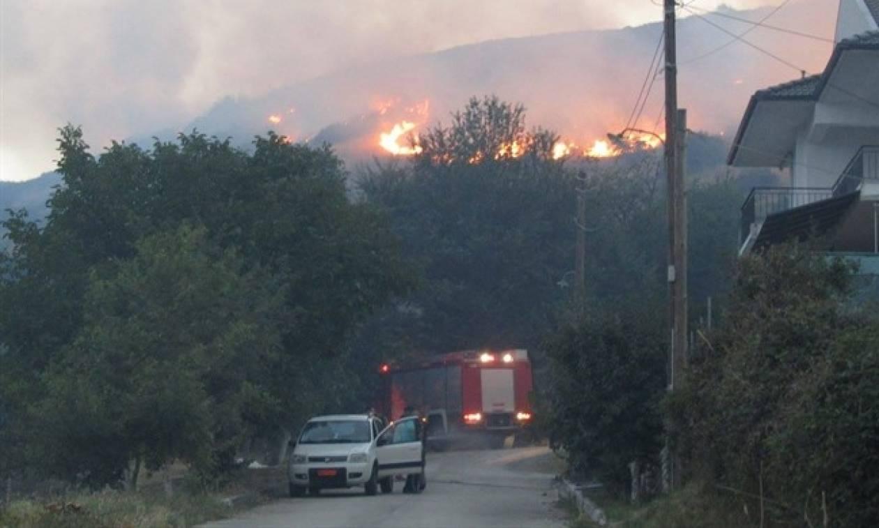 Μαίνεται η φωτιά στα Ιωάννινα – Ολονύχτια μάχη με τις φλόγες που απείλησαν οικισμό