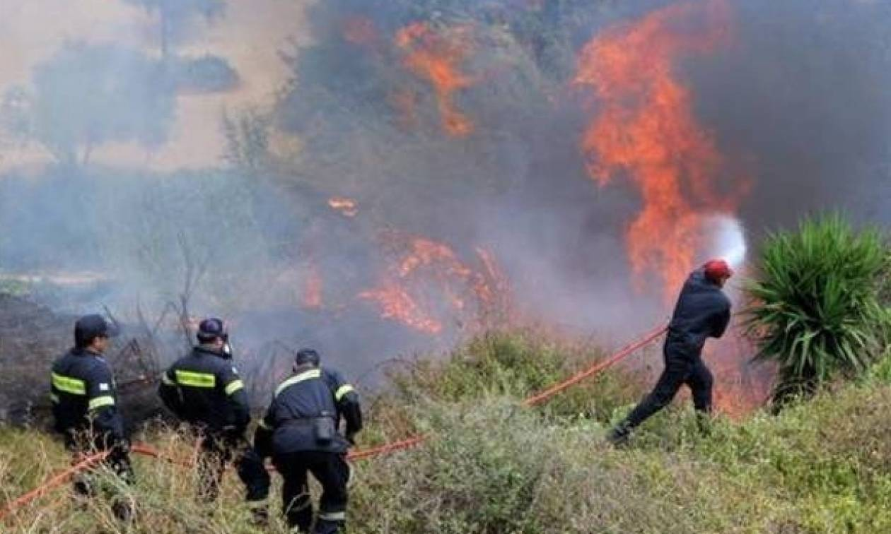 Φωτιά τώρα: Καίγεται αγροτοδασική έκταση στη Μεσσηνία