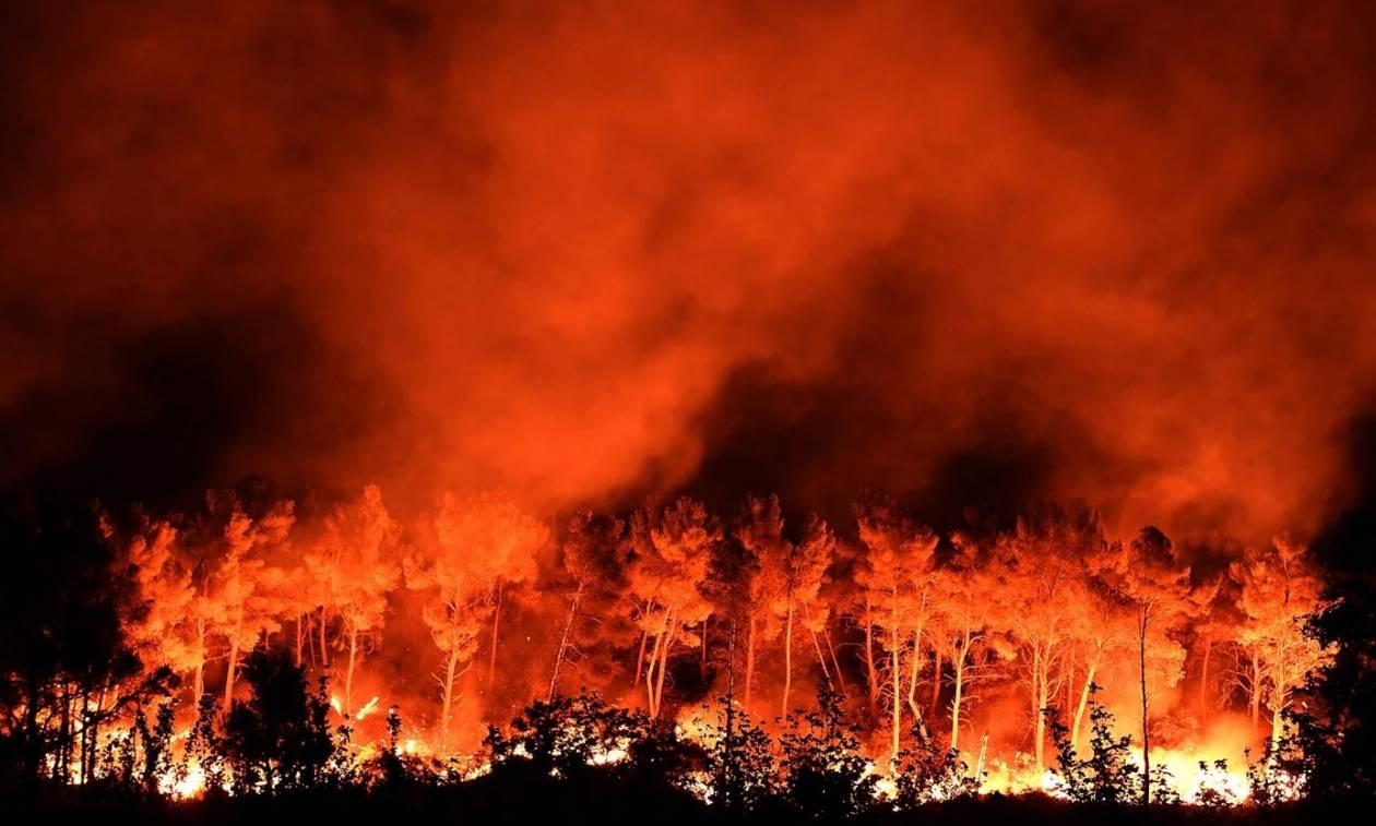 Γαλλία: Χιλιάδες πυροσβέστες στη μάχη με τις φλόγες – Εκκενώθηκαν σπίτια (vid)