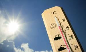 Утомленные солнцем: волна 40-градусной жары вновь захлестнула Кипр
