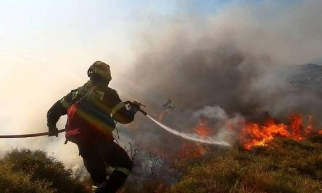 Φωτιά ΤΩΡΑ στο Πικέρμι