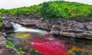 Το παραδεισένιο ποτάμι στην Κολομβία με τα πολύχρωμα νερά!
