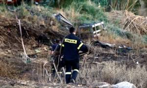 Υπό μερικό έλεγχο η φωτιά στο Πικέρμι-Ποιες περιοχές κινδυνεύουν σήμερα (31/07) λόγω ισχυρών ανέμων