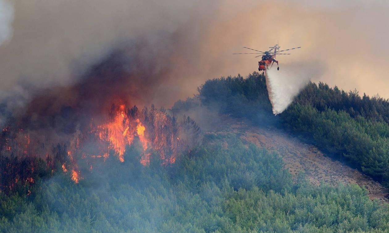 Μεγάλη φωτιά ΤΩΡΑ στη Μεσσηνία