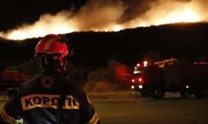 Φωτιά στα Καλύβια: Ολονύχτια μάχη των κατοίκων να σώσουν τα σπίτια τους