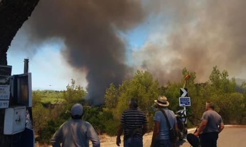 Φωτιά ΤΩΡΑ: Συναγερμός σε Ανάβυσσο και Σπέτσες – Μια ανάσα από τα πρώτα σπίτια οι φλόγες (pics+vids)
