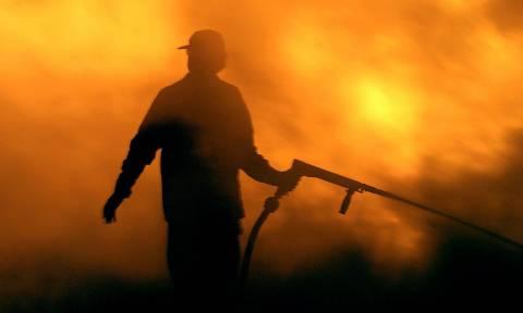 Πύρινος εφιάλτης σε Σπέτσες και Ανάβυσσο - Οι φλόγες έφτασαν μέχρι τις αυλές των σπιτιών (pics+vids)