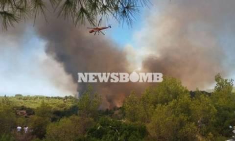 Φωτιά στις Σπέτσες: Οι εικόνες του τρόμου από τον πύρινο εφιάλτη (αποκλειστικές φωτογραφίες)