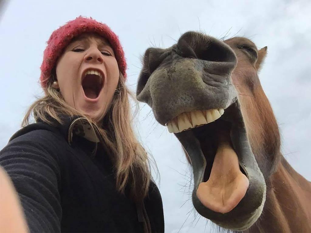 Όταν η φύση έχει κέφια: Οι πιο αστείες φωτογραφίες των βραβείων Comedy Wildlife (Pics)