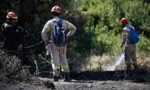 Φωτιά στην Ανάβυσσο: Ποια η κατάσταση της υγείας των τριών πυροσβεστών