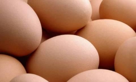 Συναγερμός στην Ευρώπη για τα μολυσμένα αυγά με εντομοκτόνο
