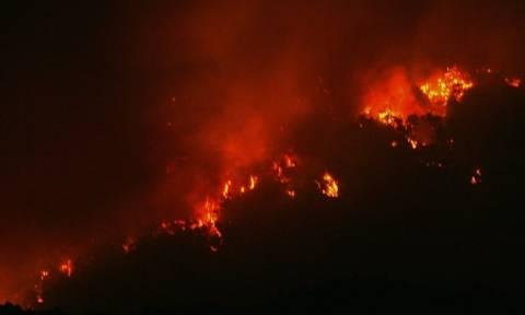Φωτιά τώρα: Δύσκολη νύχτα στα Κύθηρα - Χωρίς ρεύμα το νησί