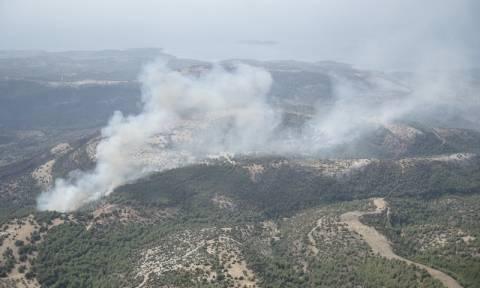 Φωτιά ΤΩΡΑ: Σε εξέλιξη πυρκαγιά στο νησί της Θάσου