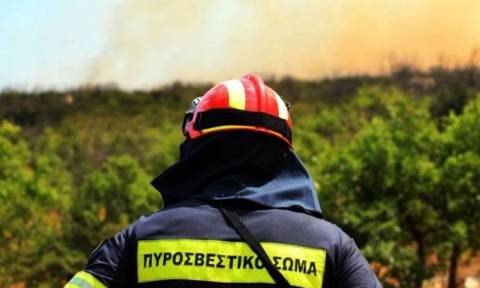 Φωτιά Τώρα: Ποιες περιοχές κινδυνεύουν με πυρκαγιά την Τρίτη (8/8)