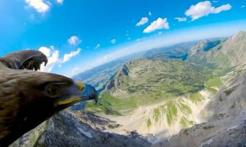 Ποιες παραλίες; Εβαλαν κάμερα στα φτερά ενός αετού και τον άφησαν ελεύθερο στις Aλπεις (Video)