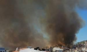 Φωτιά στην Καισαριανή: Υπό έλεγχο χάρη στην άμεση κινητοποίηση της Πυροσβεστικής