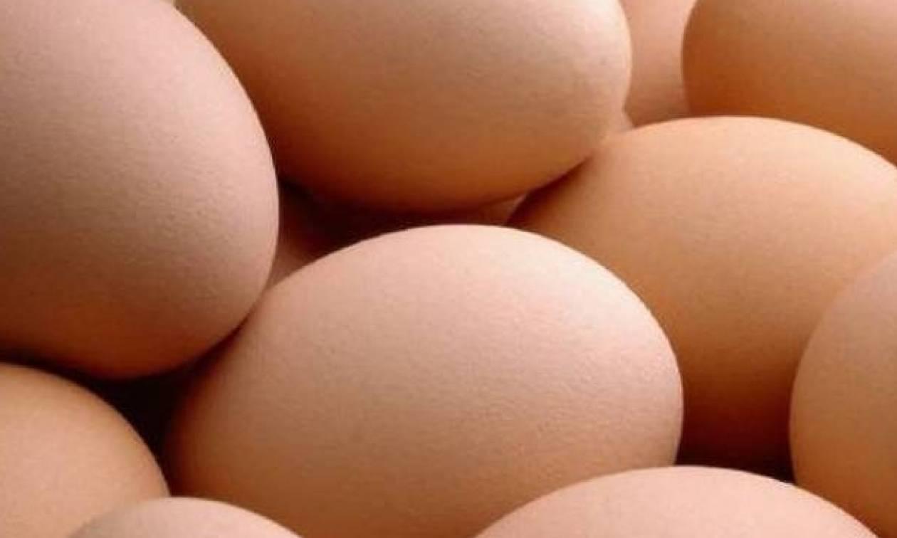 «Βόμβα» με τα μολυσμένα αβγά: 700.000 έχουν εισαχθεί στη Βρετανία
