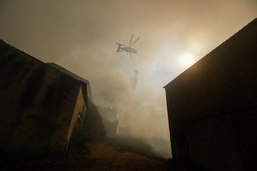 Στις φλόγες η Πορτογαλία: Ισχυρές πυρκαγιές έχουν κάψει δεκάδες χιλιάδες στρέμματα (Pics)