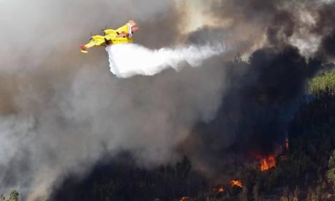Στις φλόγες η Πορτογαλία: Ισχυρές πυρκαγιές έχουν κάψει δεκάδες χιλιάδες στρέμματα (Pics+Vids)
