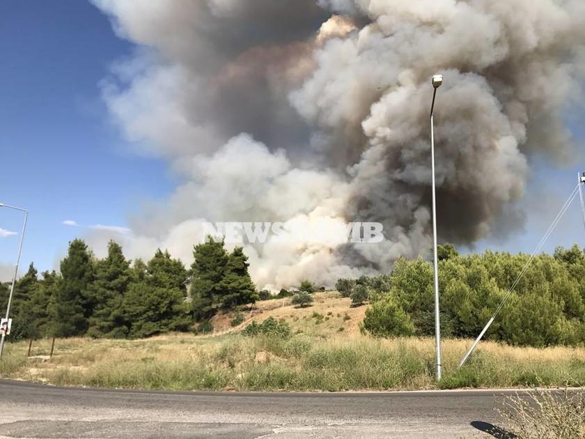 ΑΠΟΚΛΕΙΣΤΙΚΟ - Φωτιά Κάλαμος: Οι πρώτες εικόνες από τη μεγάλη πυρκαγιά (pics)