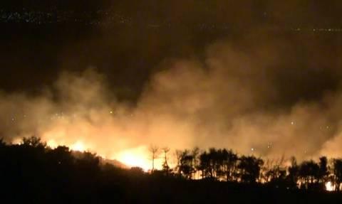 Κόλαση φωτιάς στον Κάλαμο - «Στάχτη» δεκάδες σπίτια (pics+vids)