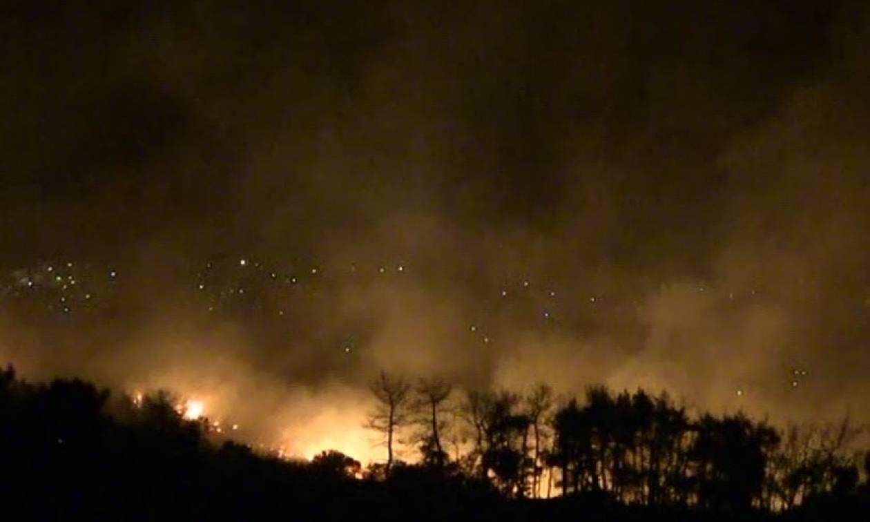 Φωτιά Κάλαμος: Σε κατάσταση έκτακτης ανάγκης ο Δήμος Ωρωπού