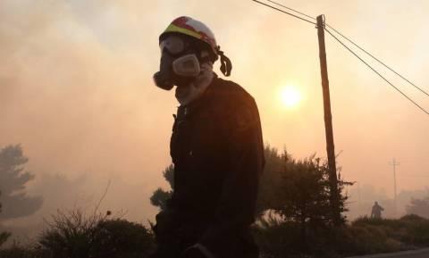 Φωτιά Κάλαμος: Πύρινη κόλαση - Βιβλική καταστροφή σε Κάλαμο και Βαρνάβα (pics+vids)
