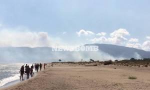 Πύρινος εφιάλτης στη Ζάκυνθο για τέταρτη μέρα – Δώδεκα μέτωπα καίνε το νησί