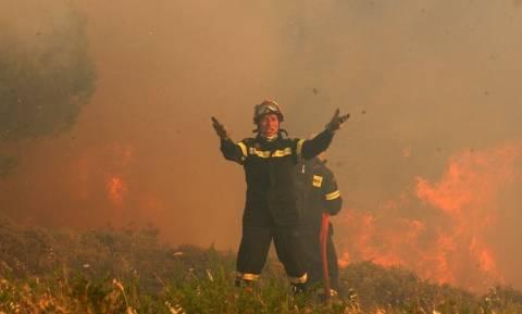 Φωτιά Βαρνάβας Live: Καίγονται τα πάντα - Οι συγκλονιστικές εικόνες που κάνουν το γύρο του κόσμου